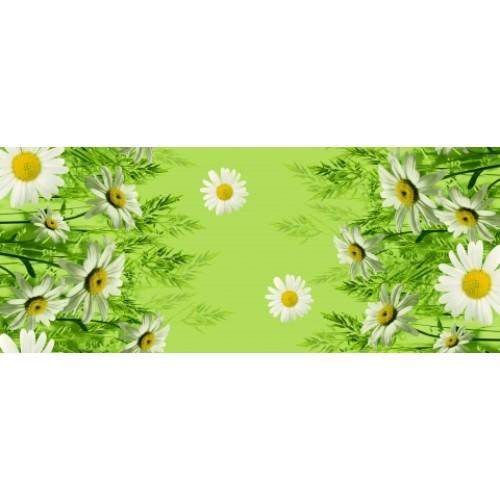1480-1 Ромашки зеленый